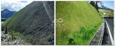 hydroseeding equipment for grass seeds