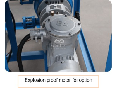 Explosion proof motor for option
