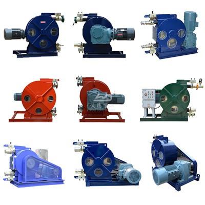 Customize peristaltic pump manufacturer in China