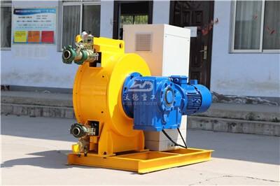 High flow rate peristaltic pump Ireland